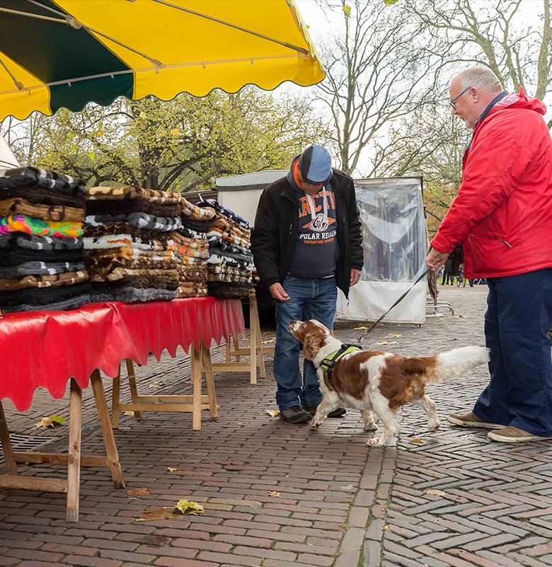 Foto pagina-dogshop
